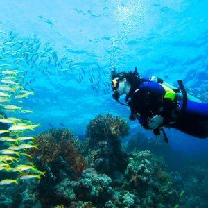 5041-mergulho ilhabela (3)